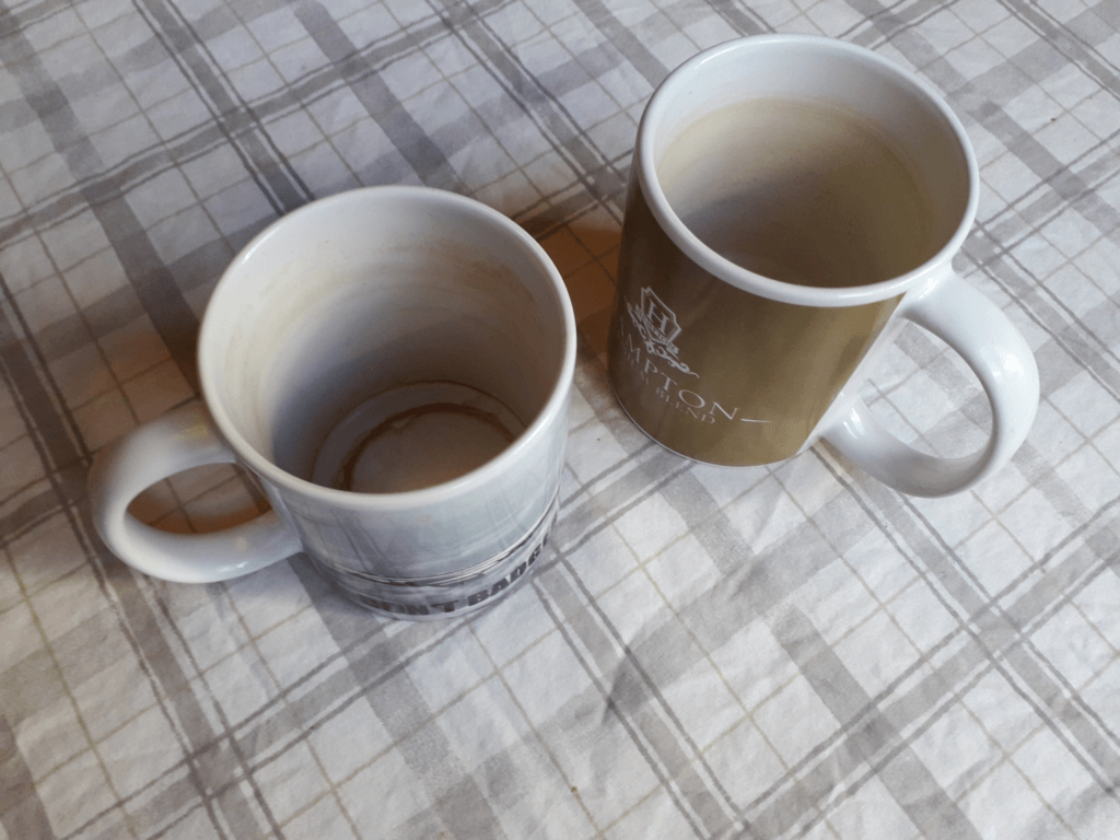 Two empty, tea-stained mugs.